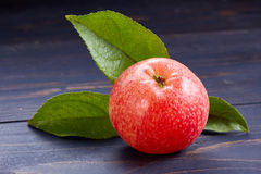 Red ripe and juicy apple with leaves. Stock Photos