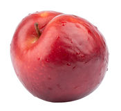 Red ripe nectarine Stock Photography
