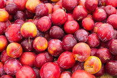 Red ripe plums at the market Stock Photo