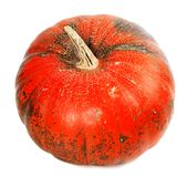 Red ripe pumpkin Royalty Free Stock Photography