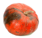 Red ripe pumpkin Royalty Free Stock Images