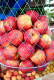 Red ripe ready to apple fruits Stock Images