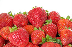 Red Ripe Strawberries. With green stems Stock Images