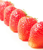 Red ripe strawberries close up Stock Photography