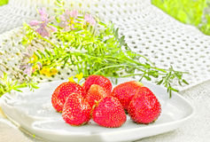 Red ripe strawberries on a white plate, backlit Royalty Free Stock Photos