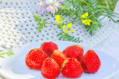 Red ripe strawberries on a white plate, close up Stock Images