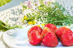 Red ripe strawberries on a white plate Stock Photos