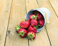 Red ripe strawberries on a wooden table in the garden in a metal Stock Photography