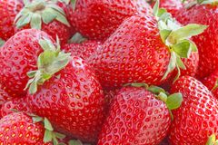 Red ripe strawberry Royalty Free Stock Photos