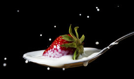 Red, ripe strawberry falling in spoon with milk Royalty Free Stock Photo