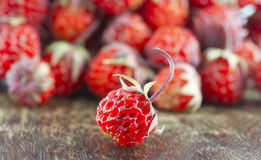 Red ripe strawberry Royalty Free Stock Images