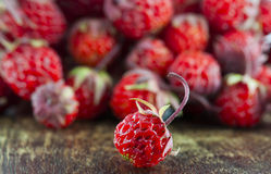 Red ripe strawberry Stock Photos