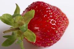 Red ripe strawberry. Stock Image