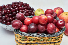 Red ripe summer plums,cherries,apples on a light background stock images