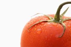 Red ripe tomato. Royalty Free Stock Image