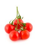 Red ripe tomato Royalty Free Stock Photo