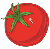 Red Ripe Tomato Royalty Free Stock Image