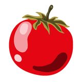Red ripe tomato Stock Images