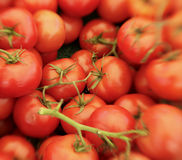 Red, Ripe Tomatoes Stock Images