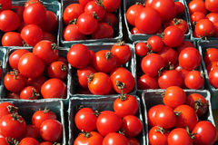 Red, ripe tomatoes. Red, organic, vine ripen tomatoes at a farmer's market Stock Image