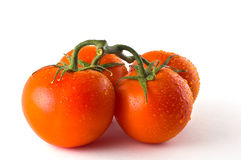 Red ripe tomatoes against white. A group of vine ripened tomatoes against white background Stock Images