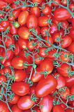 Red ripe tomatoes Stock Photo