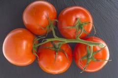 Red ripe tomatoes on black stone. Studio photo Stock Images