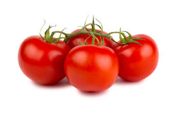 Red ripe tomatoes with green branch Stock Images