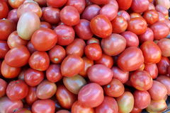 Red ripe tomatoes Stock Photos