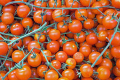 Red ripe tomatoes. Some red ripe tomatoes for sale at a market stock photography