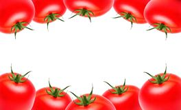 Red ripe tomatoes on the top and bottom on a white isolated background, copyspace. Vegetables, healthy eating, market stock images