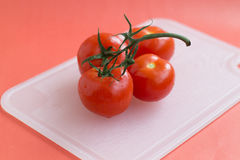 Red ripe tomatoes royalty free stock image