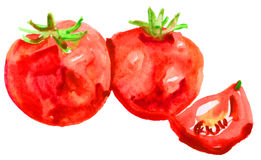 Red ripe tomats watercolor Stock Photos