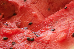 Red ripe watermelon fruit background Stock Image