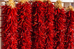 Red, ristra hanging peppers Royalty Free Stock Image