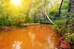 Red river Stock Photography