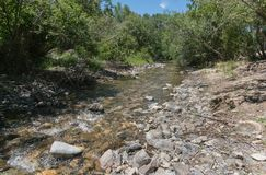 The Red River in New Mexico. The Red River in northern New Mexico is small but very active royalty free stock images