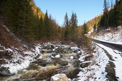 Red river, white ice and green firs. Royalty Free Stock Images