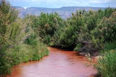 Red River Winding Through Mountains and Trees. A red muddy river beautifully winds through green trees in a mountain setting in northern New Mexico Stock Photography