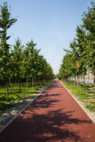 The Red Road, green trees, blue sky Stock Photo