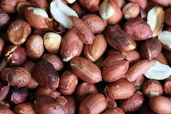 Red roasted peanuts, some open, with and without peel. Peanut, groundnut, goober. Grain legume with high oil content, an oil crop. Edible seeds, salty or used royalty free stock images