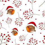 Red Robin Bird Santa Claus and Berry on White Background. Vector Illustration.  stock illustration