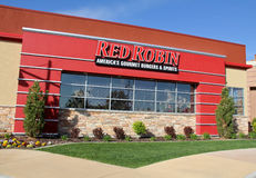 Red Robin in Utah Stock Photo