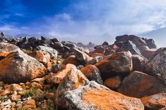 Free Red Rock Beach Park Stock Photography - 49936542