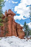 Red rock campground  pike national forest colorado springs woodl Stock Photography