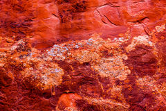 Red Rock Canyon Abstract Devils Garden Arches National Park Moab Utah. USA Southwest. Lichens on red canyon walls create many abstracts close up royalty free stock images