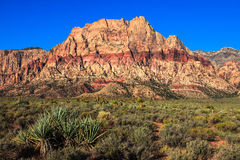Red Rock Canyon Conservation Area Royalty Free Stock Photography