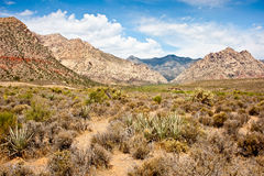 Red Rock Canyon, Las Vegas, Nevada Stock Image