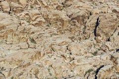 Red rock canyon, Las Vegas, Nevada Royalty Free Stock Photos