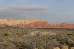 Red Rock Canyon Las Vegas Nevada. Red Rock Canyon with Desert tundra in foreground background shows slight clouds over canyon rock Stock Photos